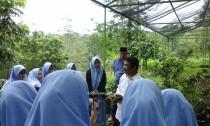 Para siswi diberikan breaving oleh petugas perkebunan pangklungan Wonosalam