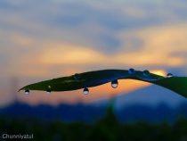 Foto: Ghunniyatul Karimah